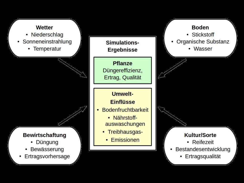 Pflanzenwachstumsmodelle schematisch