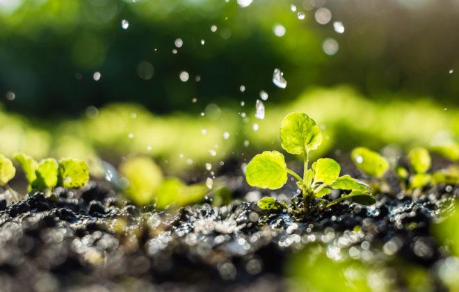 farming-software_water-management