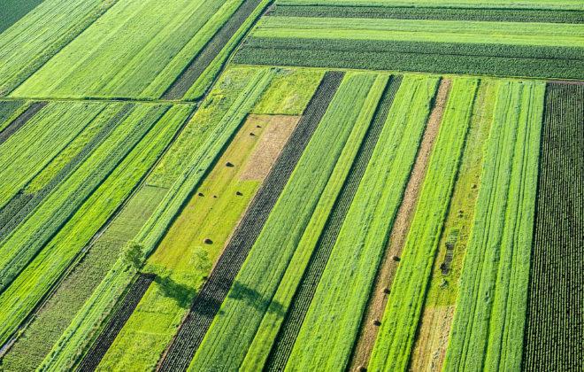 farming.software_crop-rotation